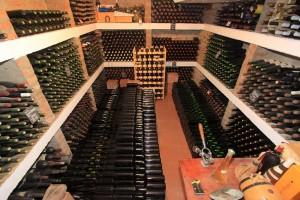 Negotin-vinarija